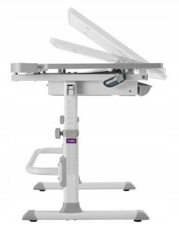 Biurkosa Regulowane biurko i krzesło dla dziecka Grey 11976334
